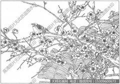 梅花 线描图片高清大图16下载