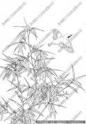 竹子 线描图片高清大图32下载